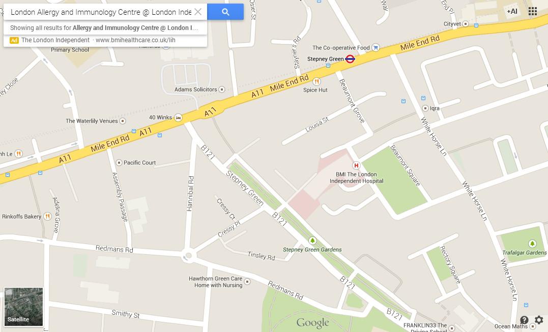 Allergy_Clinic_East_London_Map